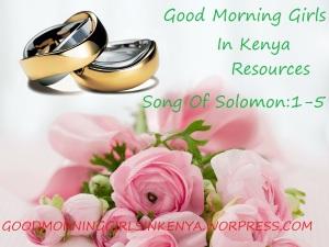 wedding-rings-251590_1280(1),